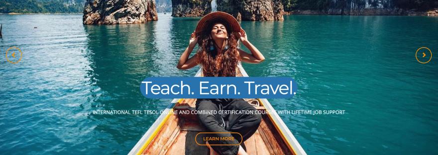 teflonlinepro.com Home Page screenshot.